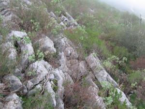 Aspecto da elevação a sul da Lapa de Alburitel.